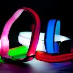 Weihnachts-Geschenktipps | 4 Your Pet – LED Sicherheitshalsband für Hunde