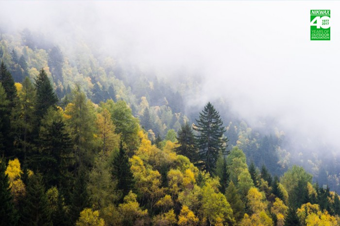 EOCA 2 Million Trees